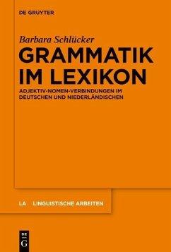 Grammatik im Lexikon (eBook, PDF) - Schlücker, Barbara