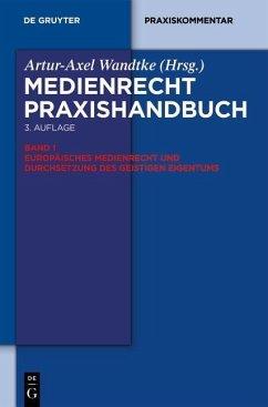 Europäisches Medienrecht und Durchsetzung des geistigen Eigentums (eBook, ePUB)