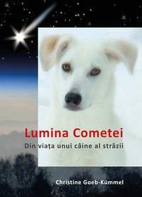 Lumina Cometei