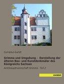 Grimma und Umgebung - Darstellung der älteren Bau- und Kunstdenkmäler des Königreichs Sachsen