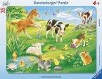 Tiere auf der Wiese (Rahmenpuzzle)