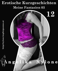 Erotische Kurzgeschichten 12 - Meine Fantasien 03 (eBook, ePUB)