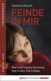 Feinde in mir (eBook, ePUB)