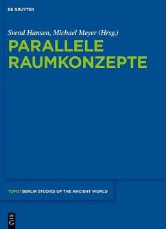 Parallele Raumkonzepte (eBook, PDF)