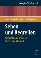Sehen und Begreifen (eBook, PDF)