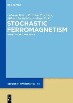 Stochastic Ferromagnetism (eBook, PDF) - Neklyudov, Mikhail; Brzezniak, Zdzislaw; Banas, Lubomir; Prohl, Andreas