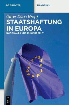 Staatshaftung in Europa (eBook, PDF)