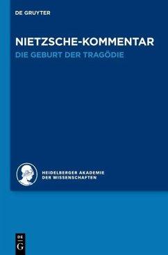 Kommentar zu Nietzsches Werk (eBook, PDF) - Schmidt, Jochen