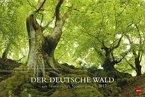 Der deutsche Wald - Ein literarischer Spaziergang 2017