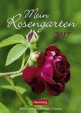 Mein Rosengarten 2017