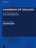 Handbook of Zoology/ Handbuch der Zoologie. Handbook of Zoology Echinoidea 1 (eBook, ePUB)