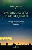 Das Universum ist ein grüner Drache (eBook, ePUB)