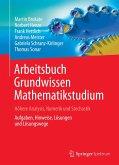 Arbeitsbuch Grundwissen Mathematikstudium - Höhere Analysis, Numerik und Stochastik (eBook, PDF)