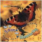Von der Raupe zum Schmetterling. Kreislauf des Lebens