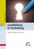 Grundbildung im Strafvollzug (eBook, PDF)