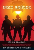 Drei Brüder (eBook, ePUB)