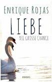 LIEBE - Die große Chance