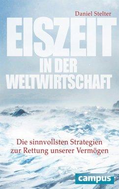 Eiszeit in der Weltwirtschaft (eBook, PDF)