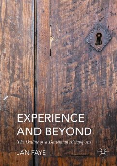 Experience and Beyond - Faye, Jan