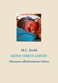 Meine vierte Geburt (eBook, ePUB)