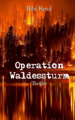 Operation Waldessturm
