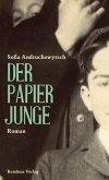 Der Papierjunge (eBook, ePUB)