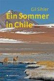 Ein Sommer in Chile