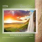 Wellness & Entspannung (Vol.5),Meditationsmusik