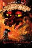 Brandgefährliche Feuerspeier / Drachenzähmen leicht gemacht Bd.5 (eBook, ePUB)