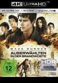 Maze Runner 2 - Die Auserwählten in der Brandwüste Special 2-Disc Edition