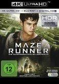 Maze Runner - Die Auserwählten im Labyrinth (4K Ultra HD)