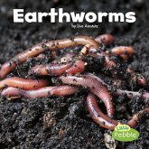 Earthworms (Little Critters)