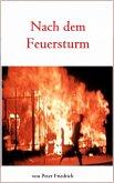 Nach dem Feuersturm (eBook, ePUB)