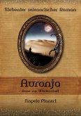 Auronja - Reise zur Wüstenstadt (eBook, ePUB)