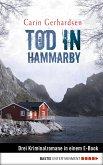 Tod in Hammarby (eBook, ePUB)