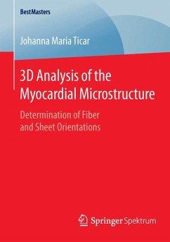 3D Analysis of the Myocardial Microstructure (eBook, PDF) - Ticar, Johanna Maria