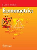 Econometrics (eBook, PDF)