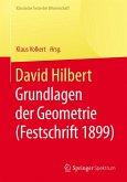 David Hilbert (eBook, PDF)