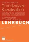 Grundwissen Sozialisation (eBook, PDF)