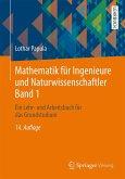 Mathematik für Ingenieure und Naturwissenschaftler Band 1 (eBook, PDF)