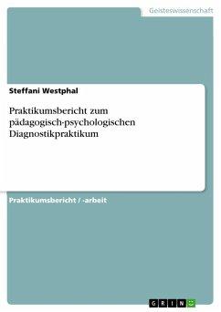 Praktikumsbericht zum pädagogisch-psychologischen Diagnostikpraktikum