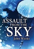 Assault From the Sky (eBook, ePUB)