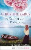 Im Zauber der Polarlichter (eBook, ePUB)