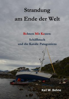 Strandung am Ende der Welt (eBook, ePUB)