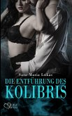 Die Entführung des Kolibris / Hard & Heart Bd.1 (eBook, ePUB)