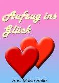 Aufzug ins Glück (eBook, ePUB)