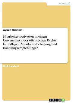 Mitarbeitermotivation in einem Unternehmen des öffentlichen Rechts. Grundlagen, Mitarbeiterbefragung und Handlungsempfehlungen (eBook, PDF)