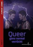 Queer - ganz normal verrückt (eBook, PDF)
