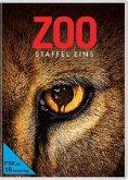 Zoo - Staffel 1 DVD-Box
