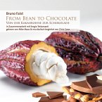 From Bean To Chocolate (MP3-Download)